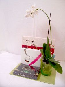 Plant & Box of chocolate gift set .